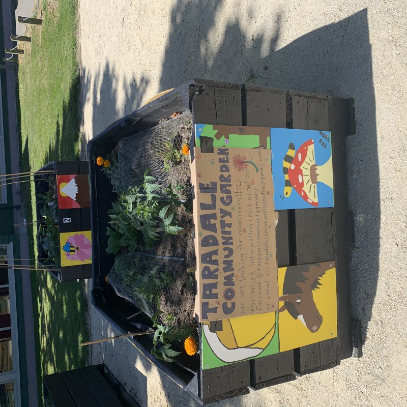 Garden gifted to the Taradale community by high school students